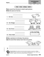 Grammar: Irregular Plural Nouns Worksheet