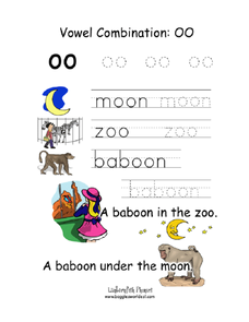 Vowel Combination OO Worksheet
