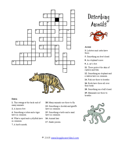Describing Animals Crossword Puzzle Worksheet for 3rd