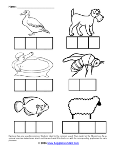 Elkonin Box: Animals Worksheet