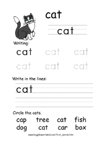 First Word: Cat Worksheet