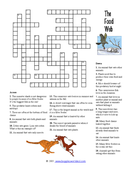 Food Web Crossword Puzzle Worksheet For 3rd 6th Grade