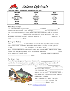 salmon life cycle lesson plans worksheets reviewed by. Black Bedroom Furniture Sets. Home Design Ideas