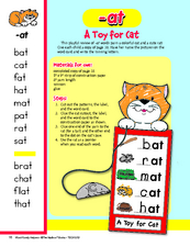 A Toy for Cat Lesson Plan