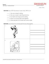 How Body Parts Work Worksheet