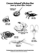 Common Arthropods of the Jersey Shore Lesson Plan