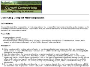 Composting in Schools: Observing Compost Microorganisms Lesson Plan