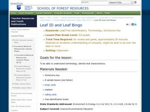 Leaf ID and Leaf Bingo Lesson Plan