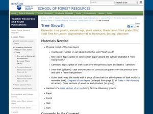 Tree Growth Lesson Plan