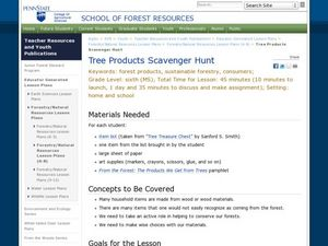Tree Products Scavenger Hunt Lesson Plan