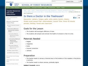 Is there a Doctor in the Treehouse? Lesson Plan