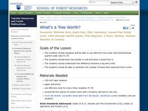 What's a Tree Worth? Lesson Plan