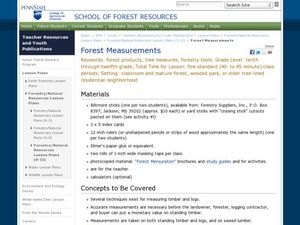 Forest Measurements Lesson Plan