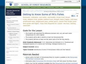 Getting to Know Some of Pennsylvania's Fishes Lesson Plan