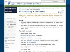 What's Dancing in the Water? Lesson Plan