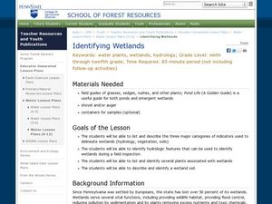 Identifying Wetlands Lesson Plan