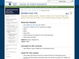 Wildlife Fact File Lesson Plan