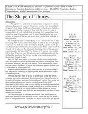The Shape of Things! Lesson Plan