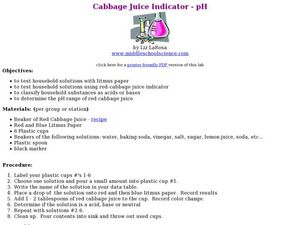 Cabbage Juice Indicator Lesson Plan