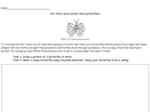 Moths and Butterflies Worksheet