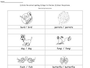 Correct Spelling: Words and Pictures Worksheet
