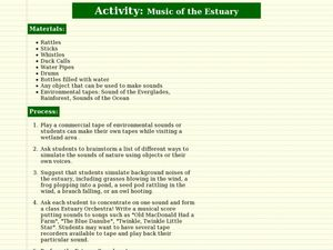 Music of the Estuary Lesson Plan