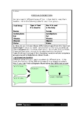 Food and Digestion Worksheet