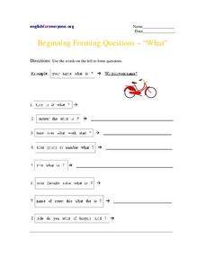 "Beginning Forming Questions- ""What"" Worksheet"