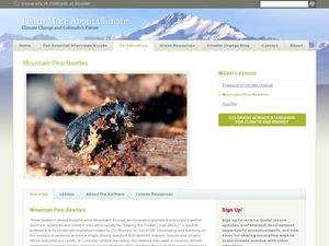 Mountain Pine Beetles Lesson Plan