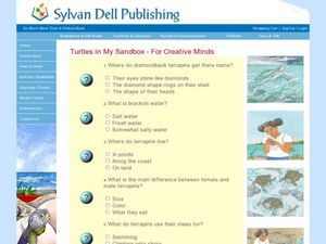 Turtles in My Sandbox - For Creative Minds Worksheet