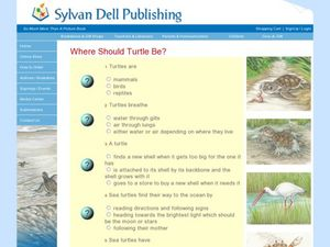 Reading Comprehension Quiz: Where Should Turtle Be? Worksheet