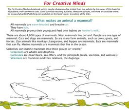 For Creative Minds: What Makes an Animal a Mammal? Lesson Plan