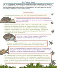 Turtle Fun Facts Worksheet