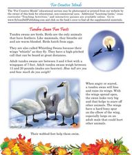 Tundra Swan Fun Facts Lesson Plan