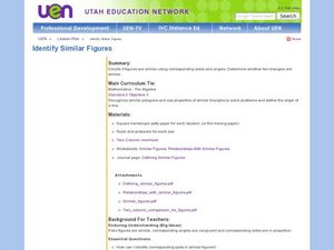 Identify Similar Figures Lesson Plan