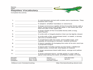 Reptiles Vocabulary Worksheet