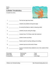 Lobster Vocabulary Worksheet