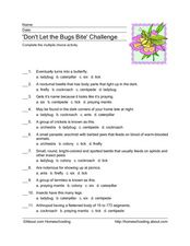 'Don't Let the Bugs Bite' Challenge Worksheet
