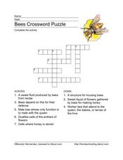 Bees Crossword Puzzle Worksheet