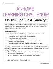 At-Home Learning Challenge: Grizzly Bear Worksheet