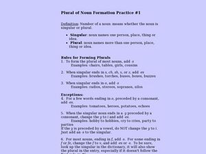 Plural of Noun Formation Practice #1 Lesson Plan