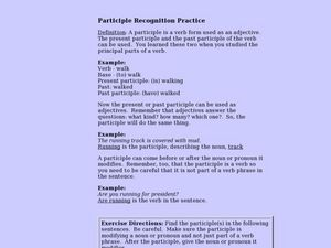 Participles Lesson Plan