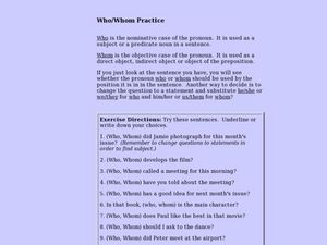 Who / Whom Practice Lesson Plan