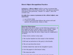 Direct Object Recognition Practice Lesson Plan