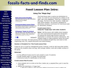 Fossil Facts and Finds- Using the Magic Bag Lesson Plan