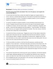 Reading: Birds and Animals in the Mirror Worksheet