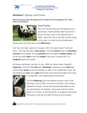 Reading: Giant Pandas, Past Time Worksheet