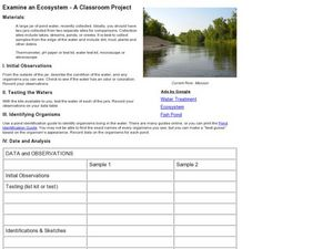 Examine an Ecosystem Lesson Plan