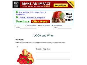 Look and Write Activity Worksheet