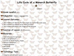 Life Cycle of a Monarch Butterfly Lesson Plan for 2nd